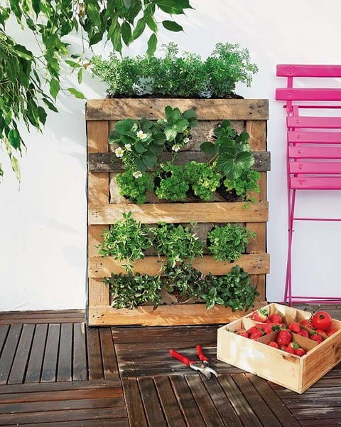 The Rustic Vertical Pallet Garden PGI11