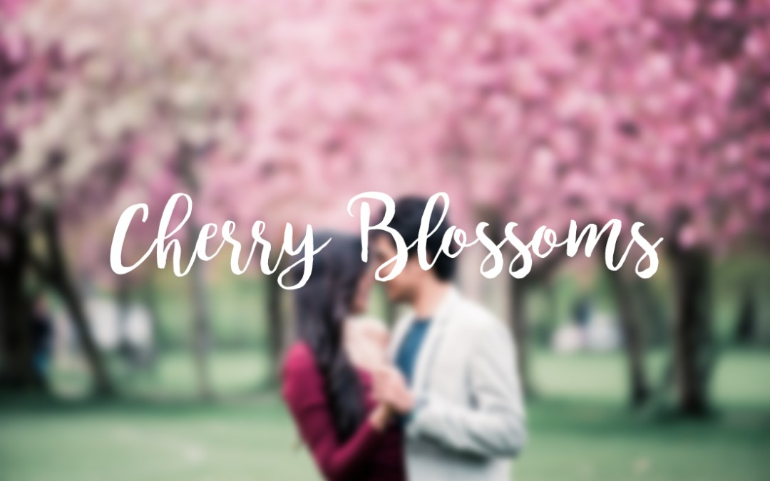 // Sagar + Yogi in the cherry blossoms