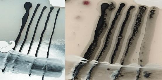 colorline1-blackbleedresult