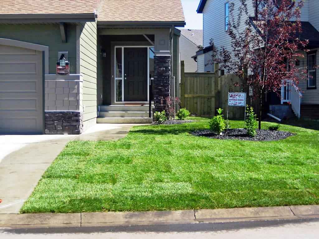 General Landscaping Calgary Front Yard  Morgan K Landscapes