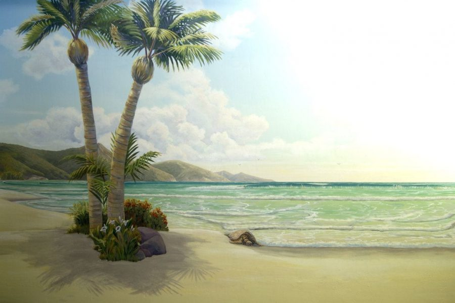 Tropical Beach Mural with Palm Trees by Los Altos Mural Painter