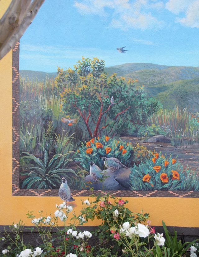 Native Quail Mural for Northern California Business