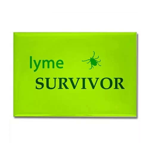 CafePress – Lyme Survivor Rectangle Magnet – Rectangle Magnet, 2″x3″ Refrigerator Magnet
