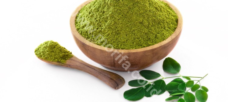 Moringa Leaf Extract: The Way To Produce And How To Use
