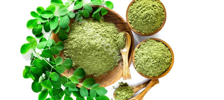 A Miracles Of Moringa Leaves Powder For Pregnant And Breastfeeding Mothers