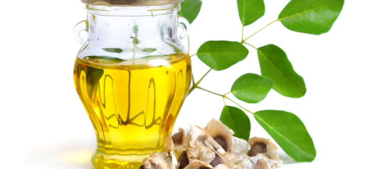 Moringa Oil Wholesale Understanding Its Benefits for Health
