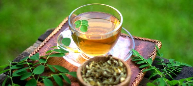Consuming Moringa Tea for Your Body Health