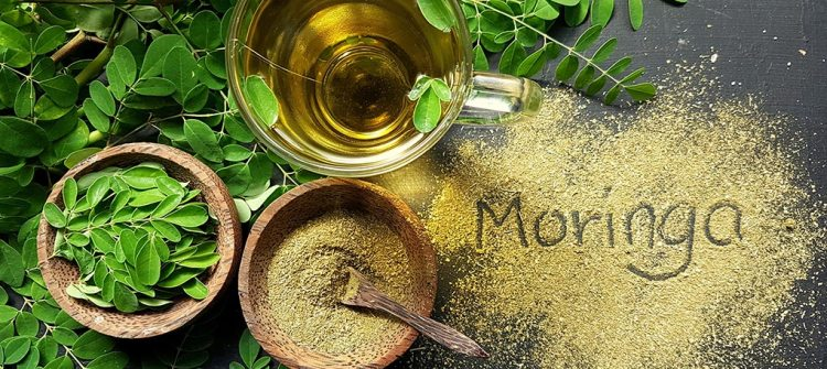 Why Is Moringa Leaf Extract Recommended to New Mothers?