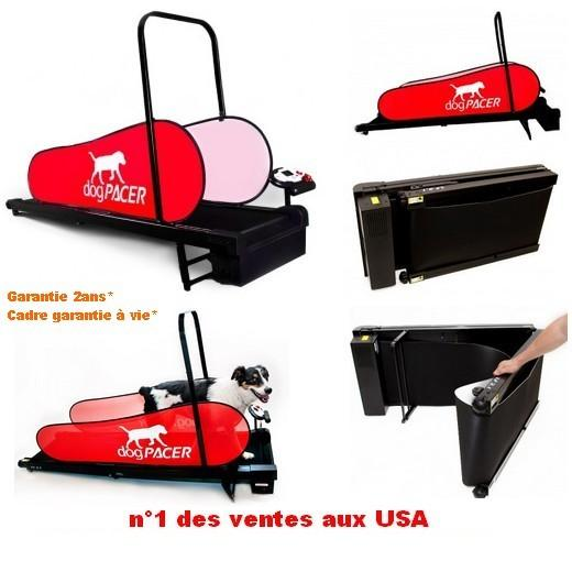 tapis roulant dog pacer home t