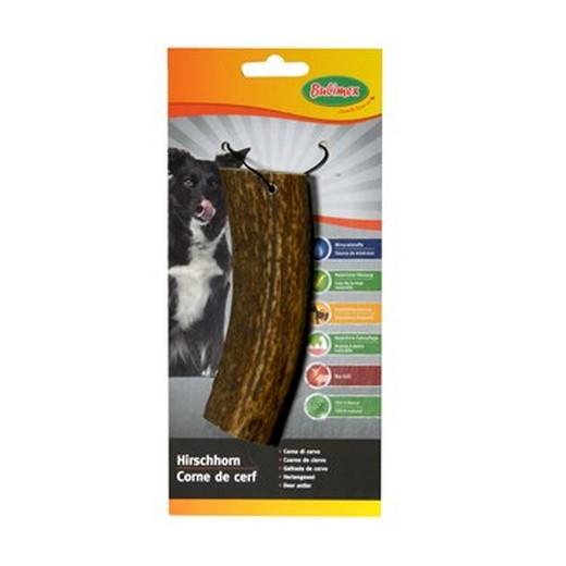 Corne de cerf - friandise pour chien