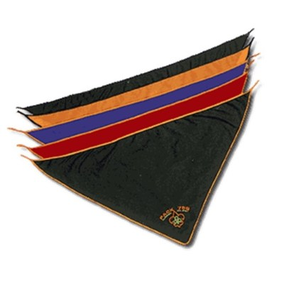 BSA Neckerchiefs
