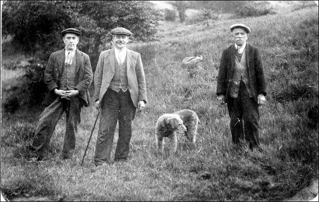 Three men with an Airedale dog