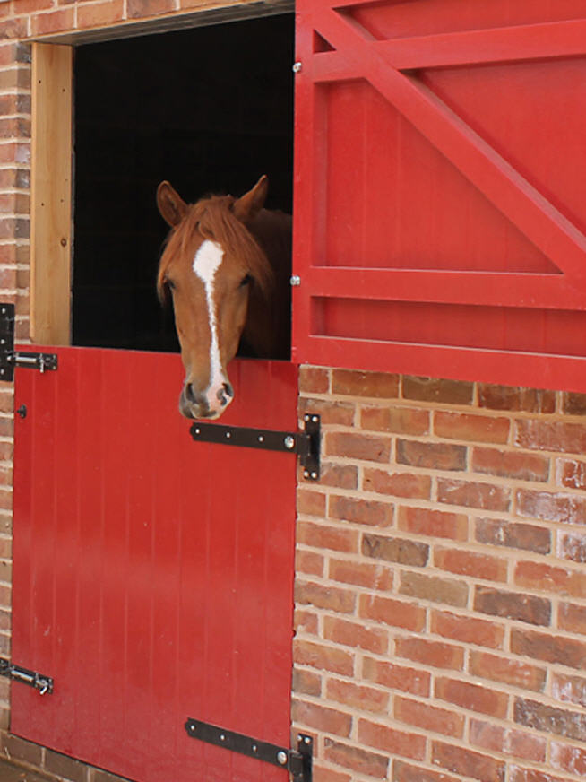 Equestrian Stable Doors Manufacturer Solid Oak and Soft Wood  Morley Equestrian