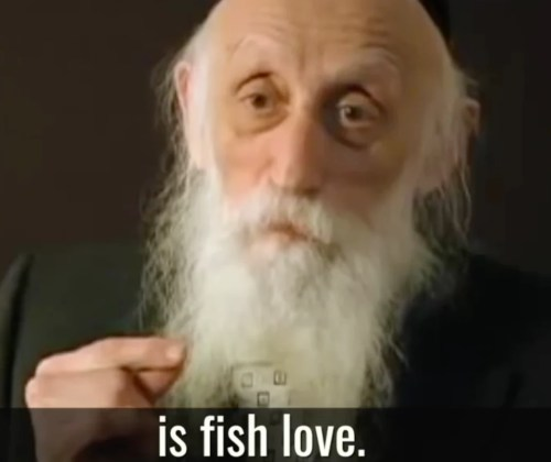 marriage advice fish love