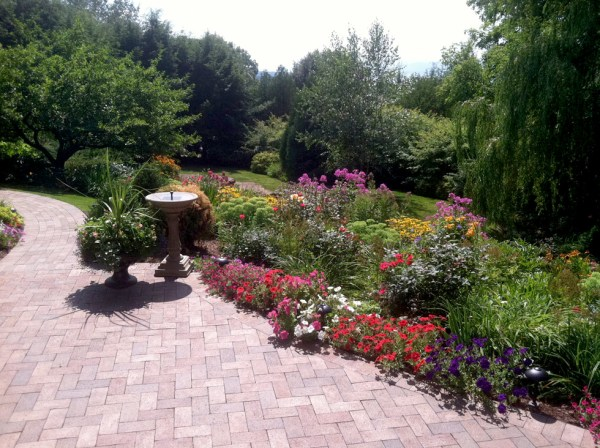 outdoor plants & planting in vt