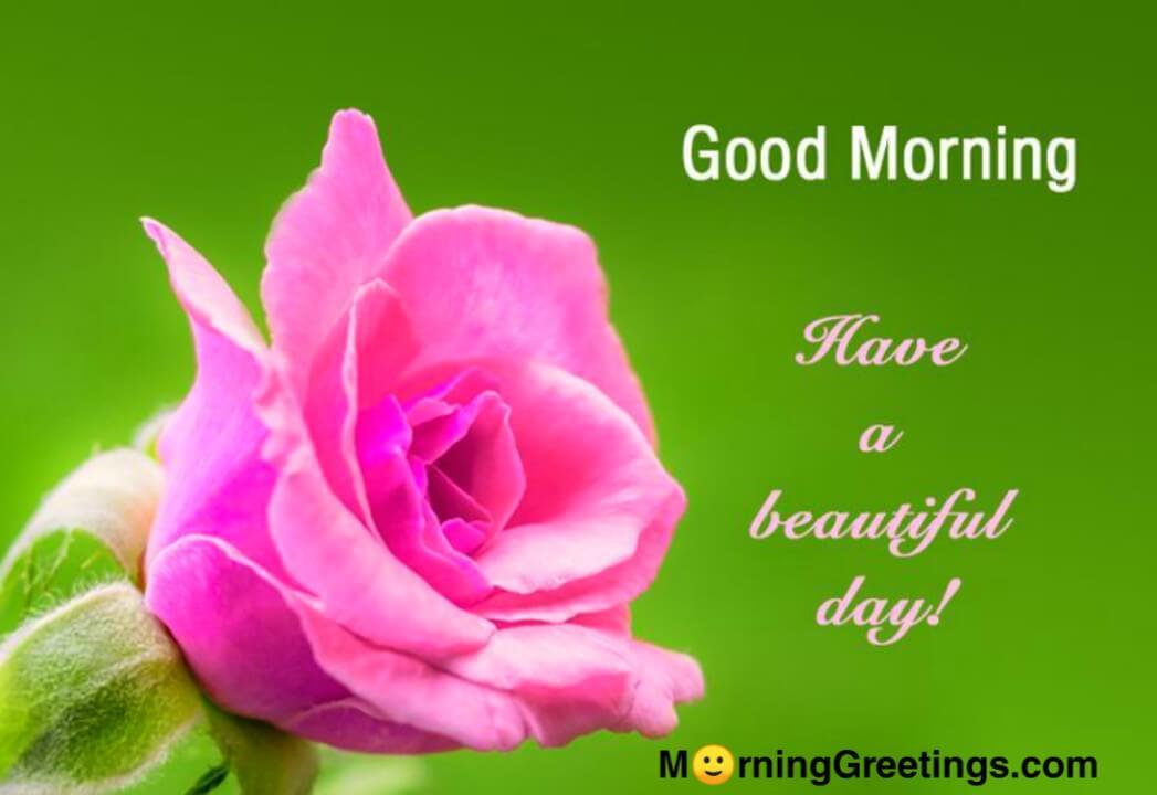 10 good day greetings