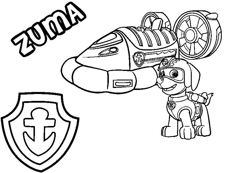 Best Malvorlagen Paw Patrol Zuma Seine Luftkissenboot Und