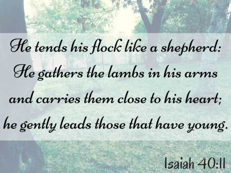 He gently leads those that have young. Isaiah 40 11