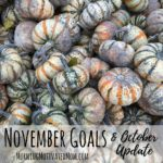 Monthly Goals – November