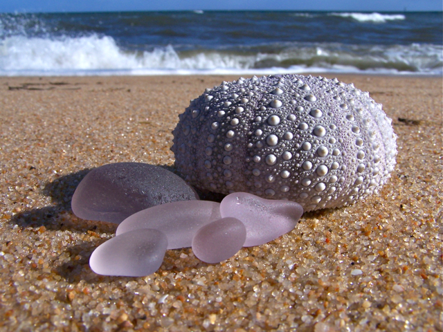 Purple Sea Glass from the Mornington Peninsula by Mornington Sea Glass
