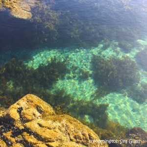 Mt Martha Beach Rock Pools by Mornington Sea Glass