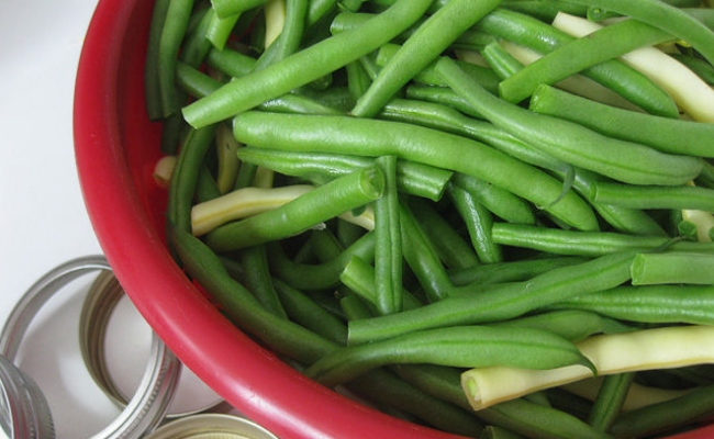Eat Beans - Top 8 Home Remedies To Lose Stomach Fat Naturally