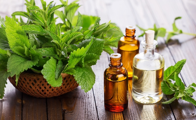 Eucalyptus oil and peppermint remedy