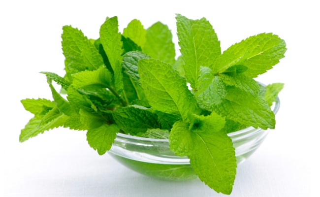 Mint Leaves - Top 10 Home Remedies For Obesity And Weight Loss