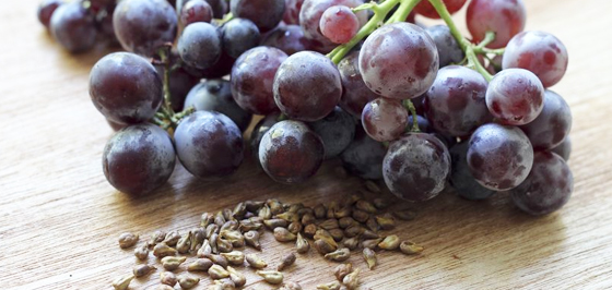 Image result for grape seed extract