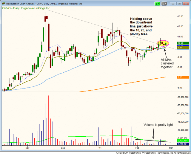 $ONVO downtrend line breakout