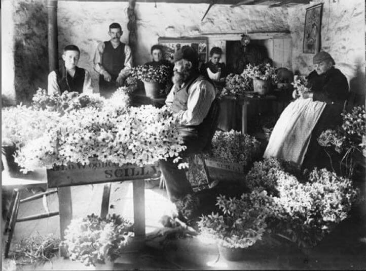 Sending the first flowers 'up country'.  A family in Scilly seated around a table in a cottage, sorting and packing flowers ready for shipping to the mainland.
