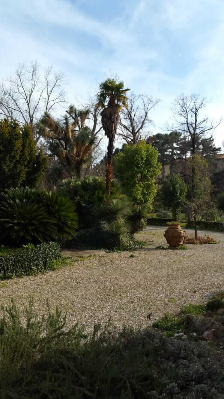 Gravelled paths at the Orto Botanico