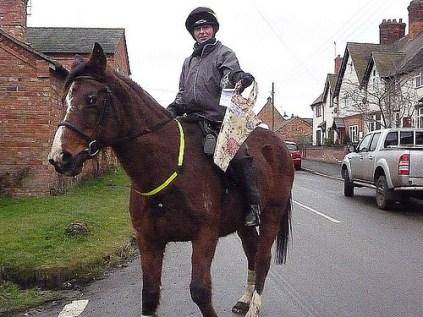 Bag a horse!