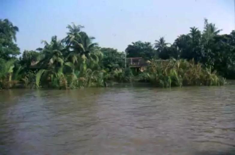 2864_watercoconut