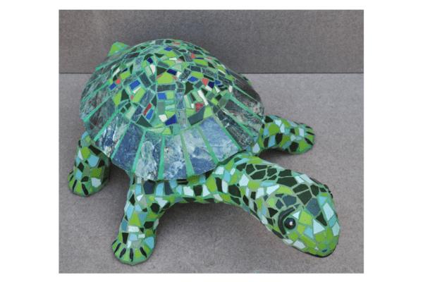 Green turtle,  70cm x 18cm, 25kg.