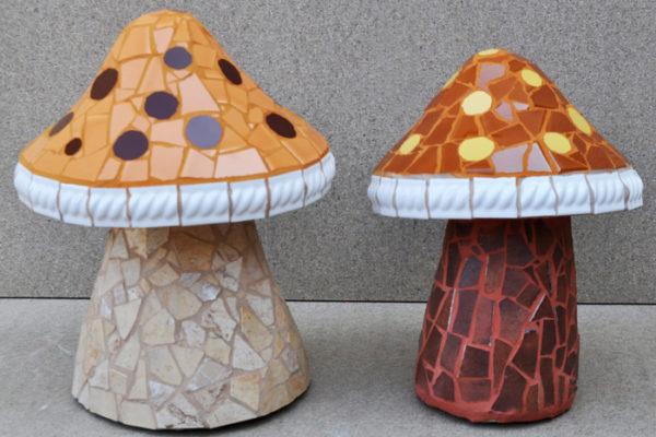 Brown mushrooms, 27cm x 19cm, 5kg.