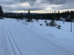 X-Country tracks