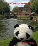 Eviscerated Panda vol 4 by Sarah Tipper