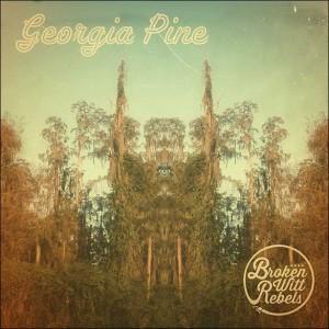 Broken Witt Rebels Georgia Pine