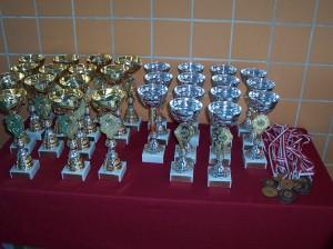 Otwarte Mistrzostwa w Pływaniu Dzieci i Młodzieży