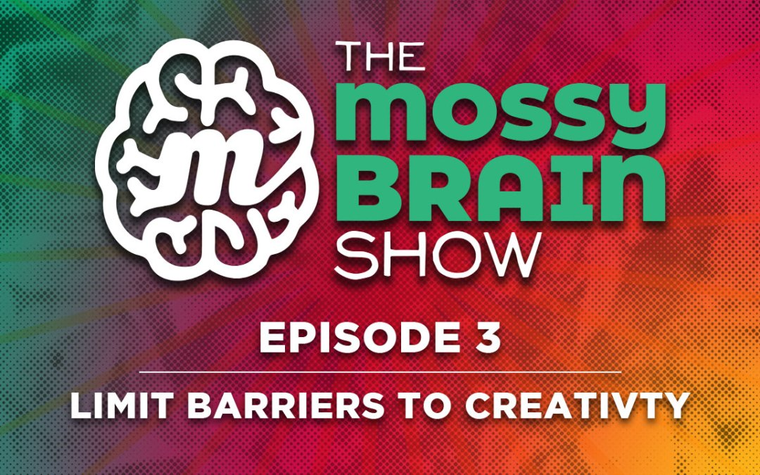 Ep 3 – Limit Barriers to Creativity