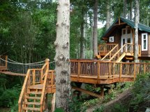 Cool Tree House Plans