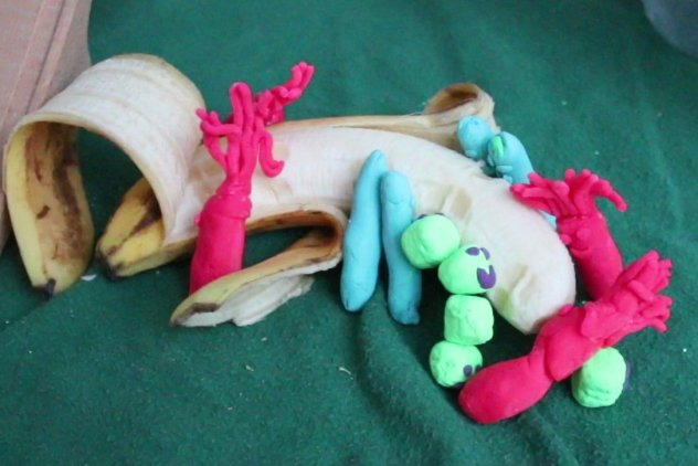 Playdough_bacterial_feeding