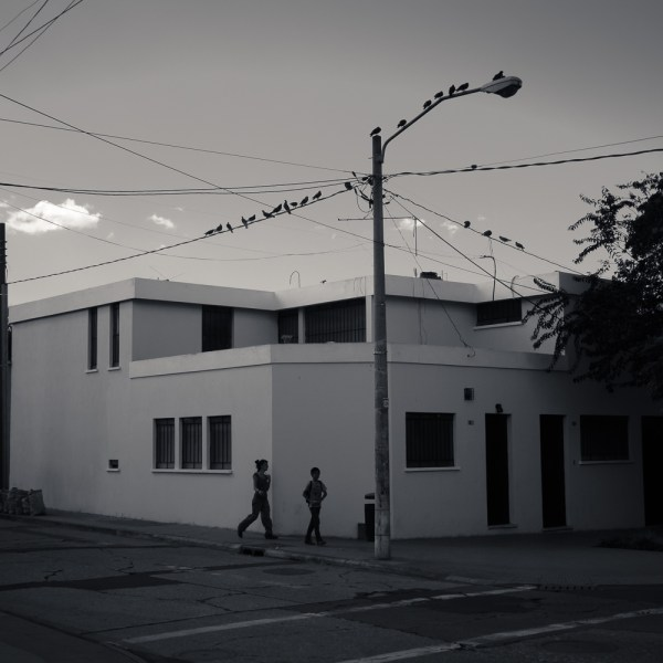 Silhouettes, Zona 2