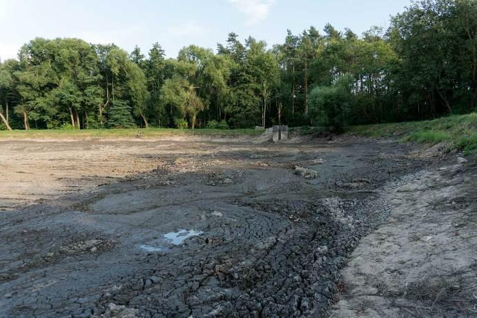 Stan prac nad rekultywacją zalewu koło Wińska, 28 lipca 2018, fot. Wojciech Medyński
