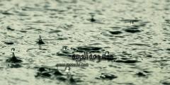 تكوين المطر الحمضي وأخطاره