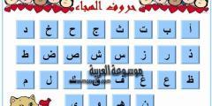 اللغة العربية والترتيب الهجائي للحروف