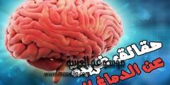 حقائق و معلومات علمية مذهلة عن المخ البشري