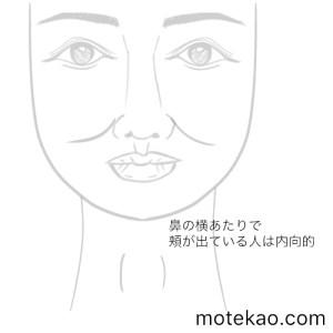 鼻の横の頬骨が高い