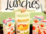 Life + Lunches: Toddler Lunches